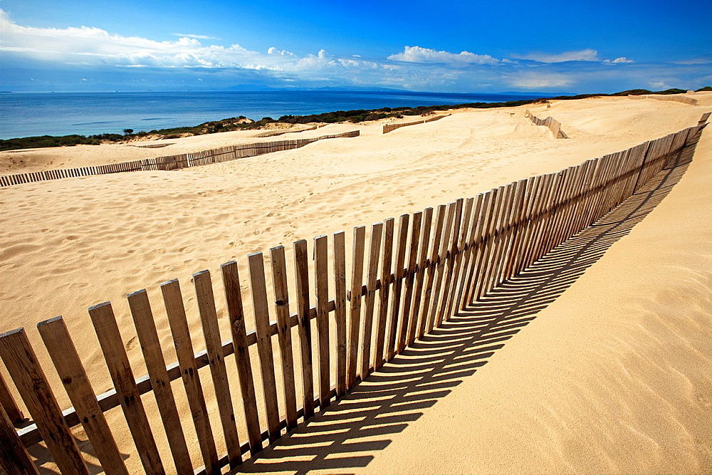 Dunes on Punta Paloma beach, Tarifa, Andalusia, Spain