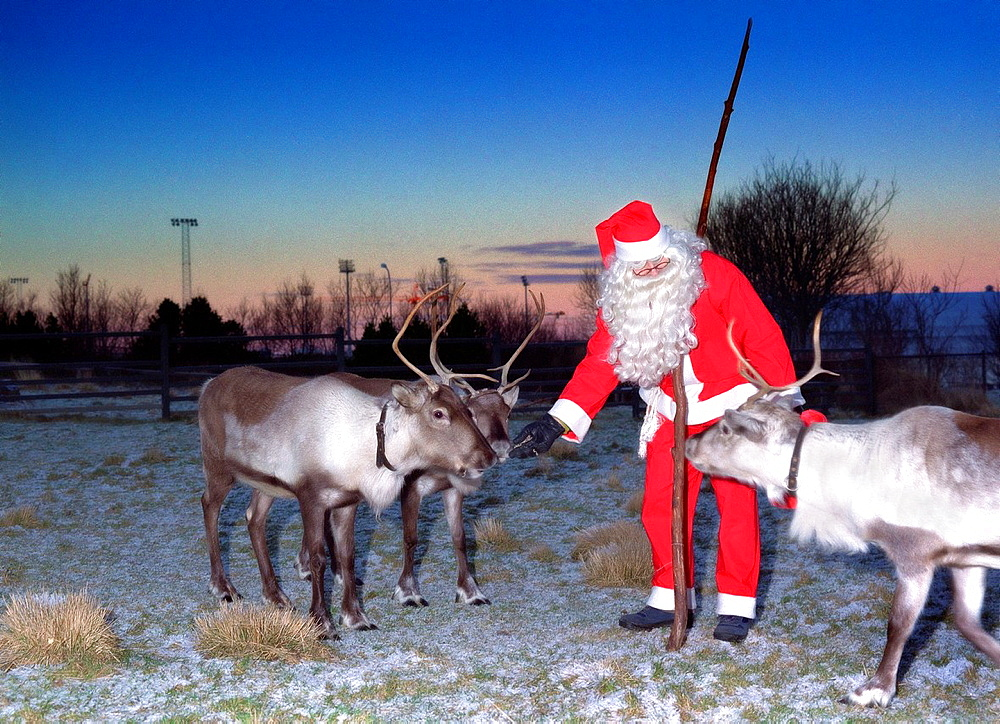 Santa Claus feeding Reindeer, Reykjavik, Iceland
