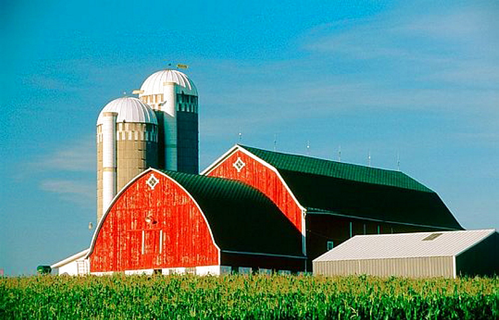 Dairy farm, barn and silo near Wausau, Wisconsin, United States of America