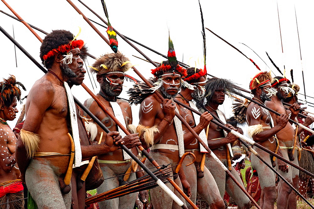 Local group of Papuas joing the Baliem Valley festival and standing in a long row in traditional appearance with weapons, Jayawijaya region, Papua, Indonesia, Southeast Asia