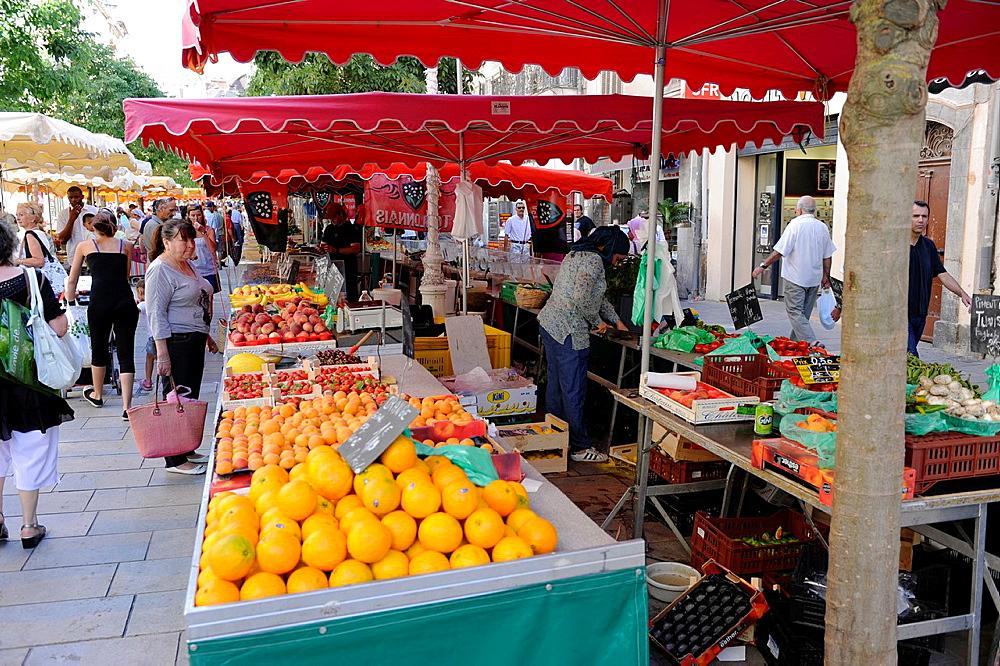 Oranges Display Market Toulon France French Riviera Mediterranean Europe Harbor