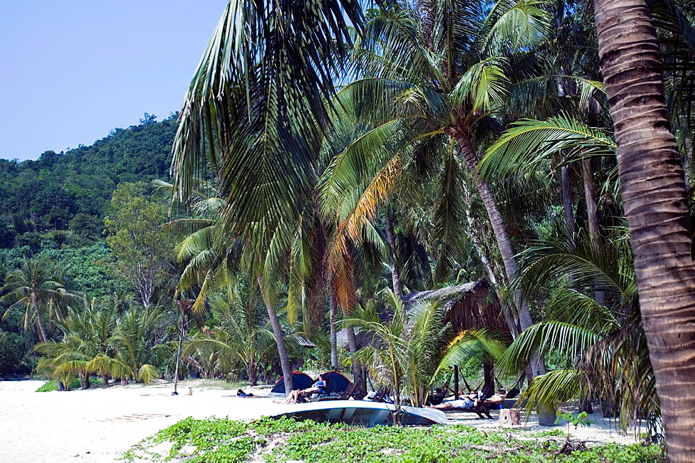 Palm trees line white sand beach Cham Island off historic Hoi An Vietnam