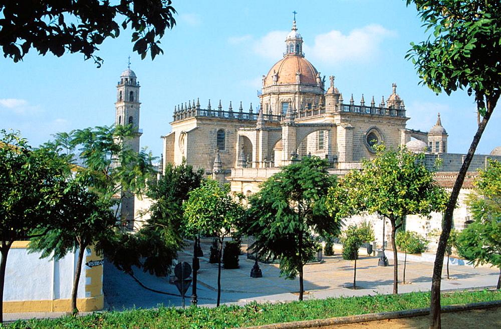 San Salvador Cathedral (XVIII c.), Jerez de la Frontera, Cadiz province, Andalusia, Spain