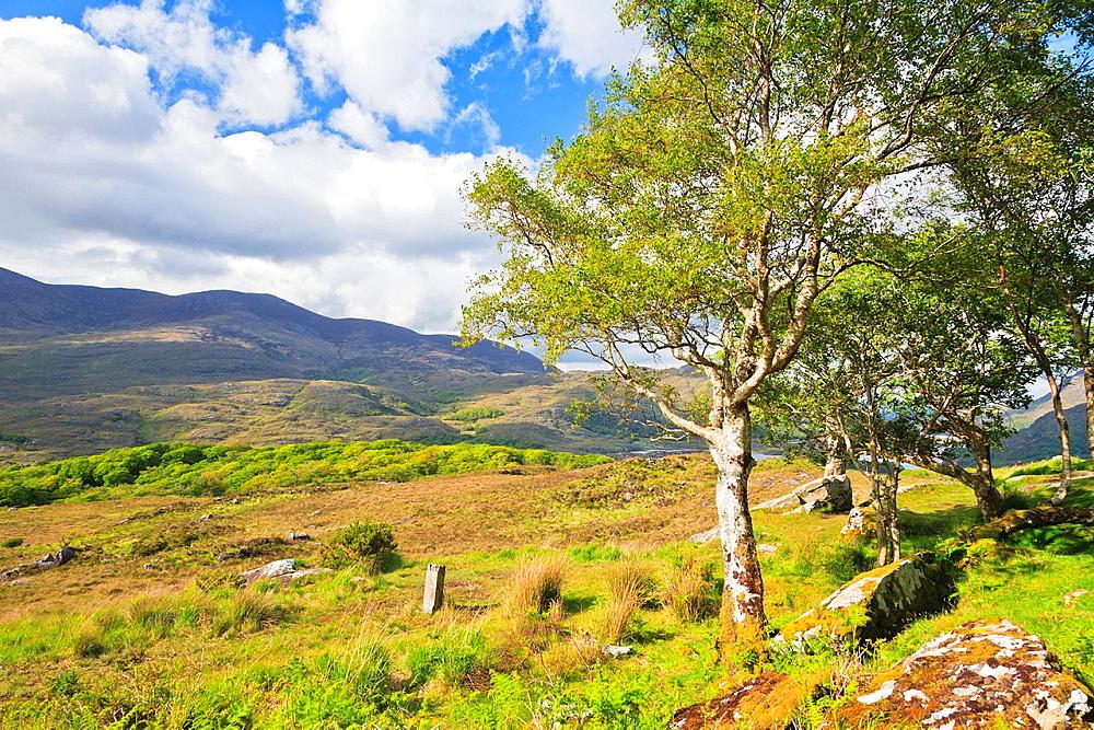 Ladies View, Co Kerry, Ireland