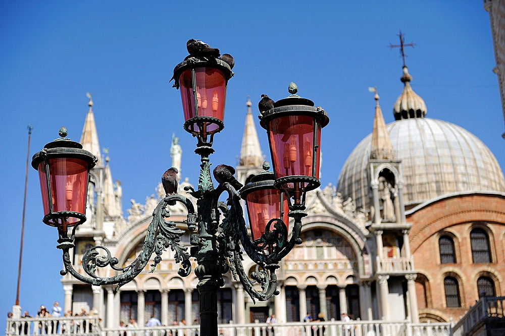 Pigeons on a lamppost in St Mark's Square with the Cathedral in the background