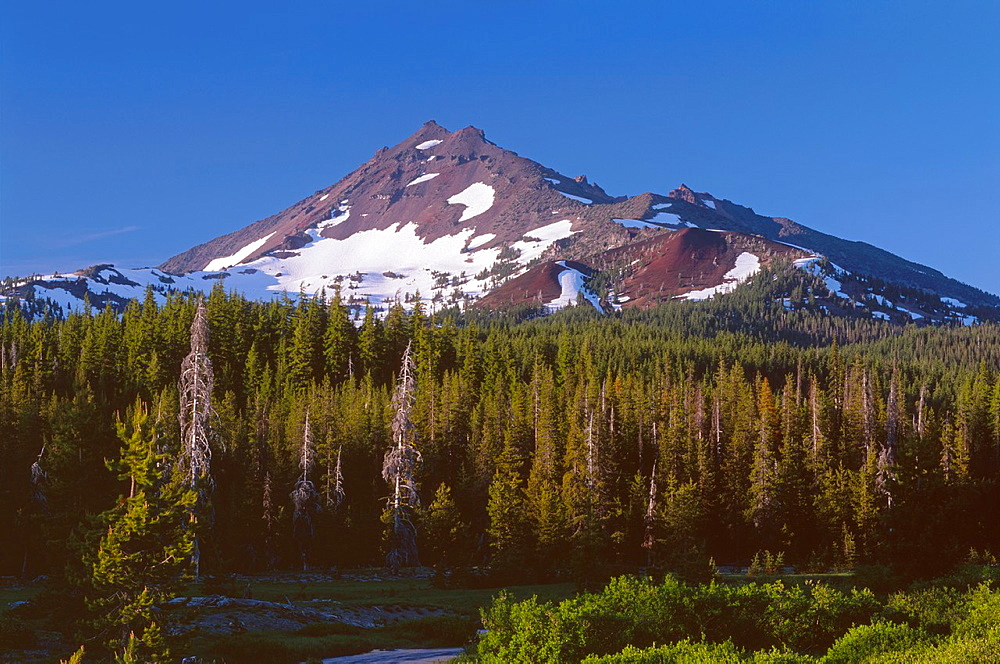 Evening light on south side of Broken Top which rises above coniferous forest and Fall Creek, Deschutes National Forest, Oregon, USA