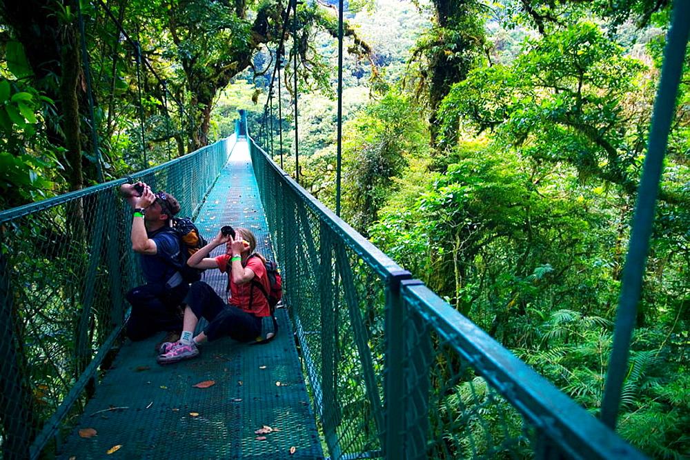 Sky walk over tropical forest, Monteverde Cloud Forest Reserve, Santa Elena, Costa Rica