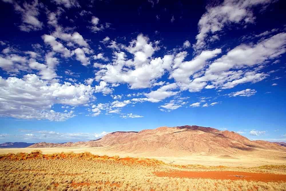 Wolwedans Landscape, NamibRand Nature Reserve, Hardap Region, Namibia, Africa