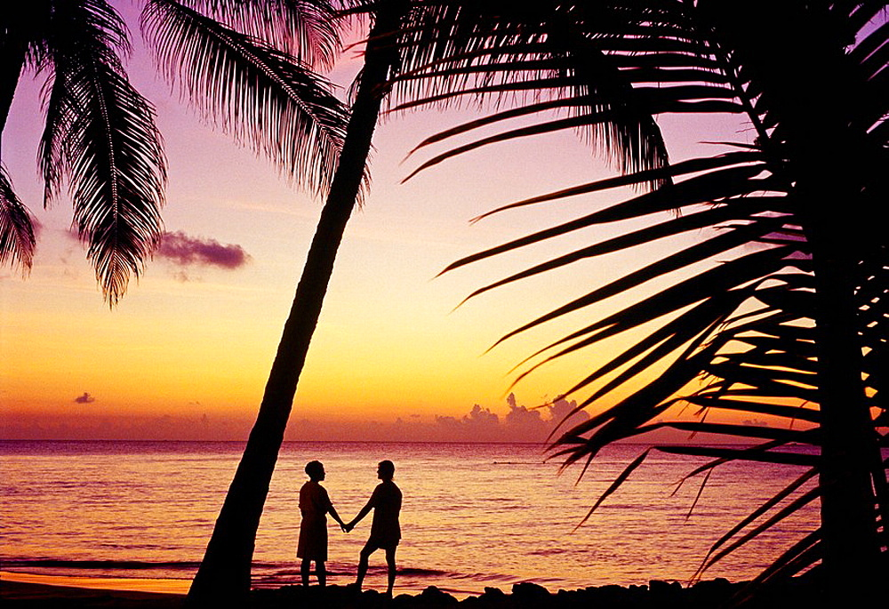 Beach, Antigua island, Antigua and Barbuda, West Indies, Caribbean