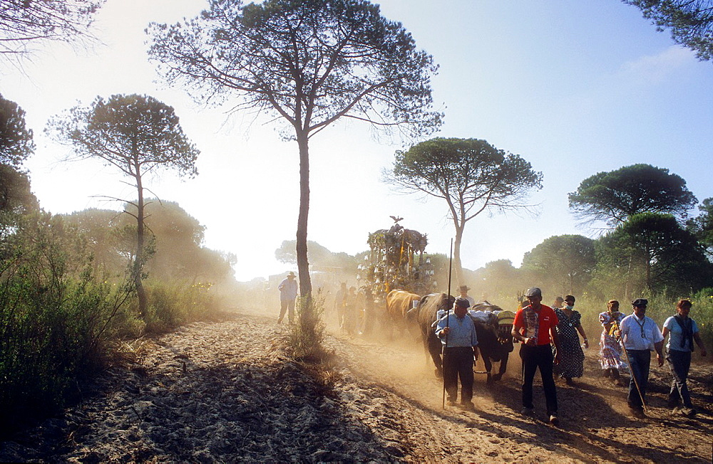 Pilgrims near Cerro del Trigo,Romeria del Rocio, pilgrims on their way through the Donana National Park, pilgrimage of Sanl√∫car de Barrameda brotherhood, to El Rocio, Almonte, Huelva province, Andalucia