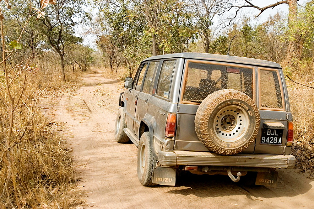 Dusty four wheel drive vehicle on bush track near Tendaba Camp Gambia River The Gambia