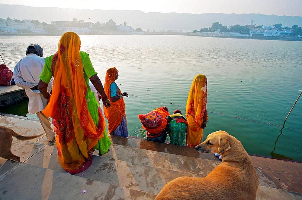 Pilgrims bathing in the Pushkar Holy lake during the Pushkar camel fair, Pushkar, Rajasthan, India, Asia - 817-37412
