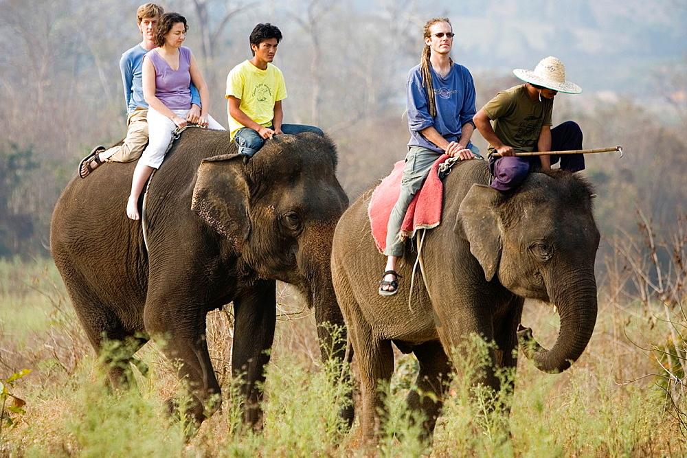 Elephant trek near Pai north Thailand