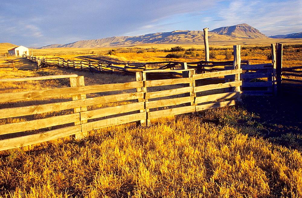 Estancia Alice landscape  El Calafate, Santa Cruz province  Patagonia  Argentina - 817-375128