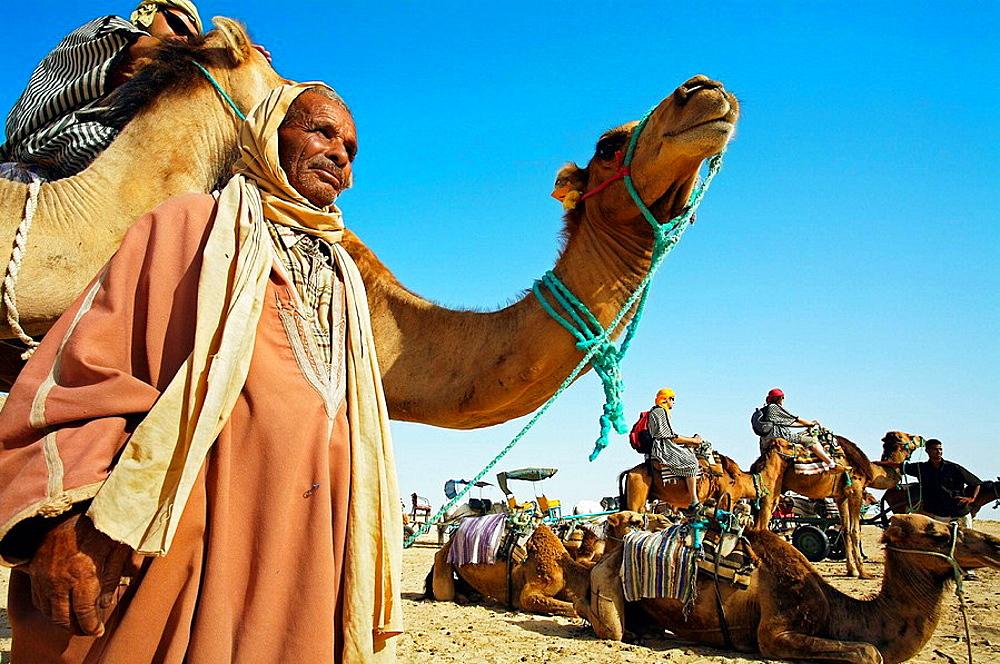 Tourists riding camels, Sahara Desert, Douz, Tunisia