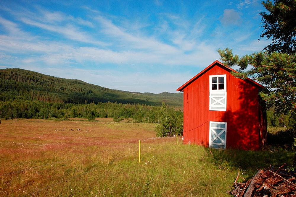 Red wooden farm house in Anundsjoe, Vaesternorrland, Sweden