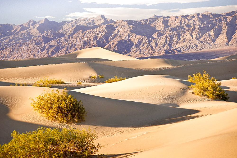 Serenity in sand as Death Valley dunes contrast with the barren mountains