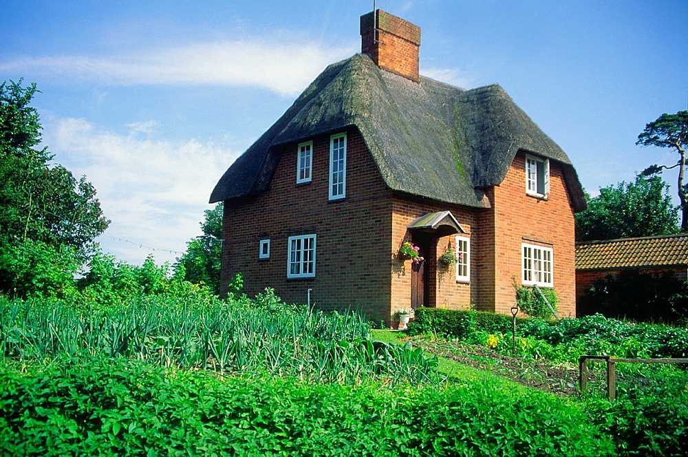Thatched country house and vegetable garden, Wiltshire, England