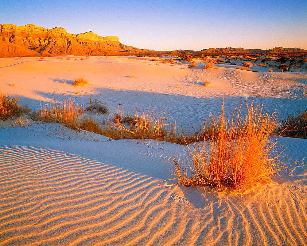Gypsum dunes with the Guadalupe Mountains in distance, sunset Guadalupe Mountains National Park, Texas - 817-389239