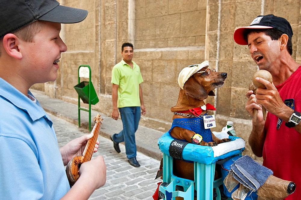 Singing Dog, Havana, Cuba