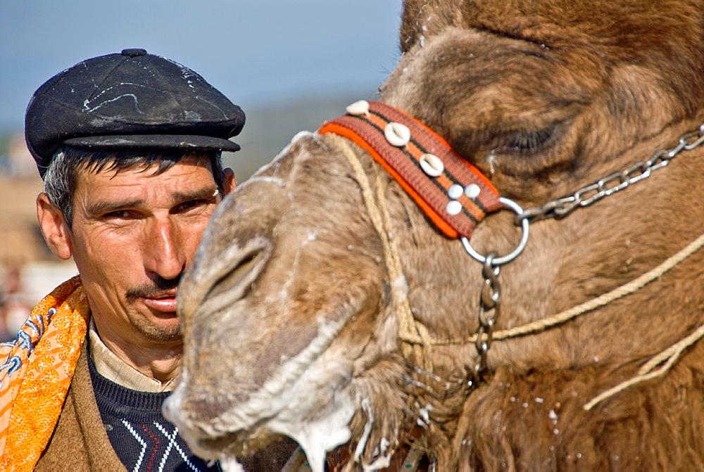 Camel Wrestling handler, Izmir, Turkey