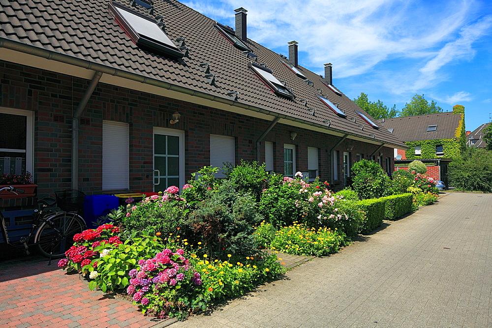 D-Krefeld, Rhine, Lower Rhine, Rhineland, North Rhine-Westphalia, NRW, residential buildings at Heinrich-Band Weg, row houses, front gardens, flower beds