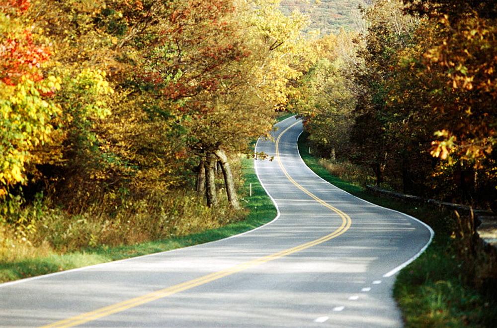 Shenandoah National Park, Virginia, USA