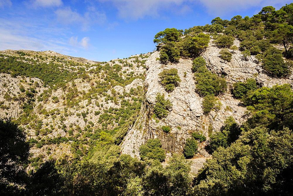 Es Cairats, Valldemossa Sierra de Tramuntana Majorca Balearic Islands Spain