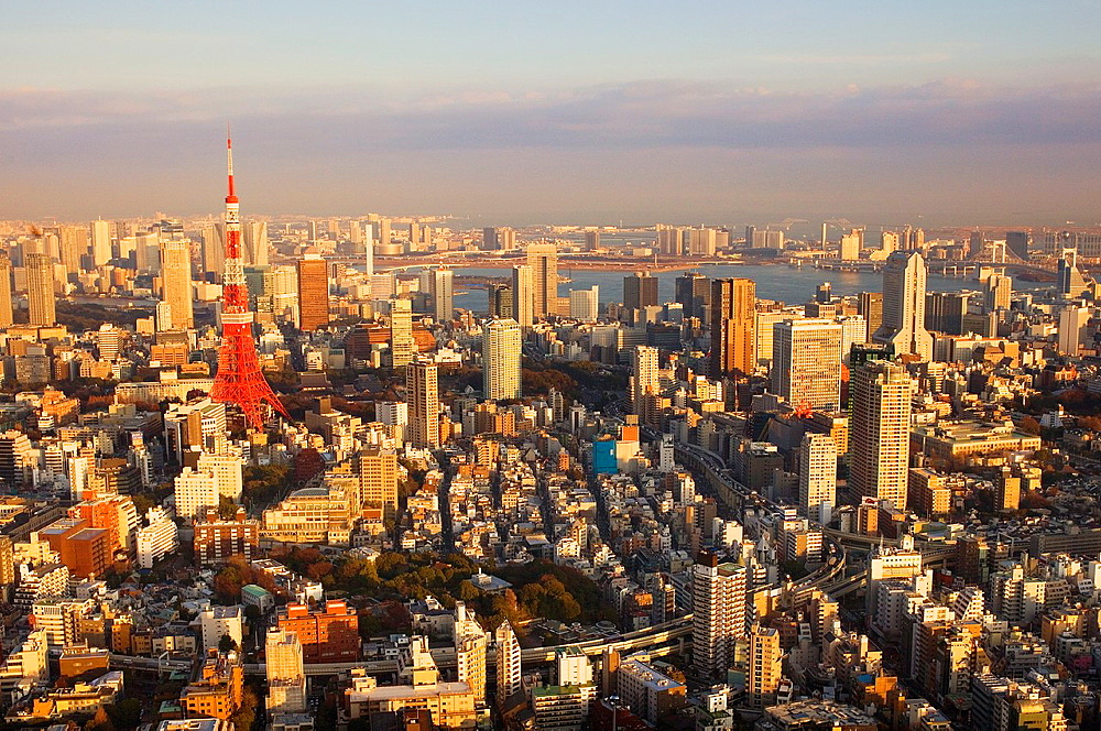 skyline of Tokyo  At left tokyo tower In background Tokyo Bay,Tokyo, Japan, Asia
