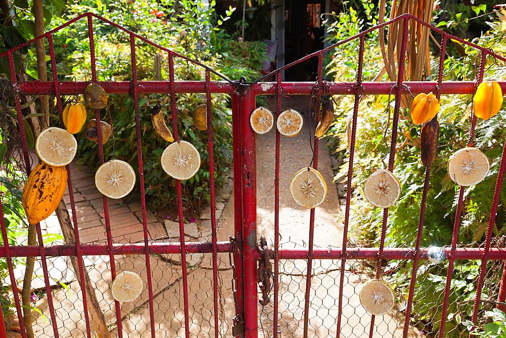 Cuba, Pinar del Rio Province, Vinales, Vinales Valley, El Jardin de Caridad, gates to tropical garden