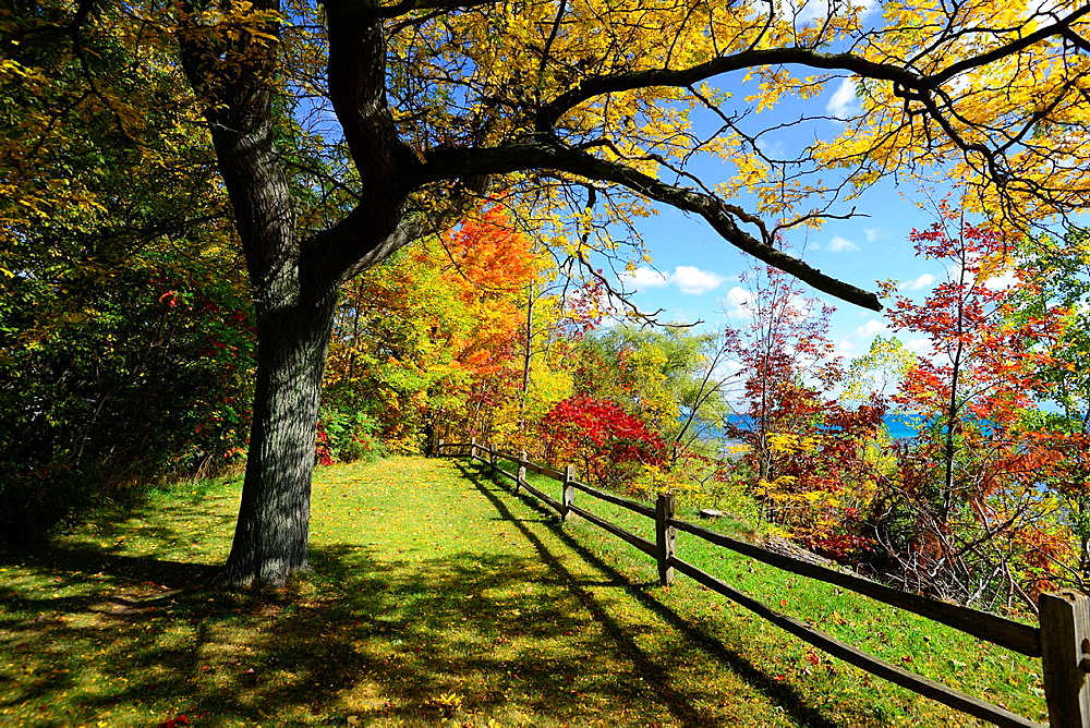 Fenced shoreline with colorful fall leaves autumn trees Michigan