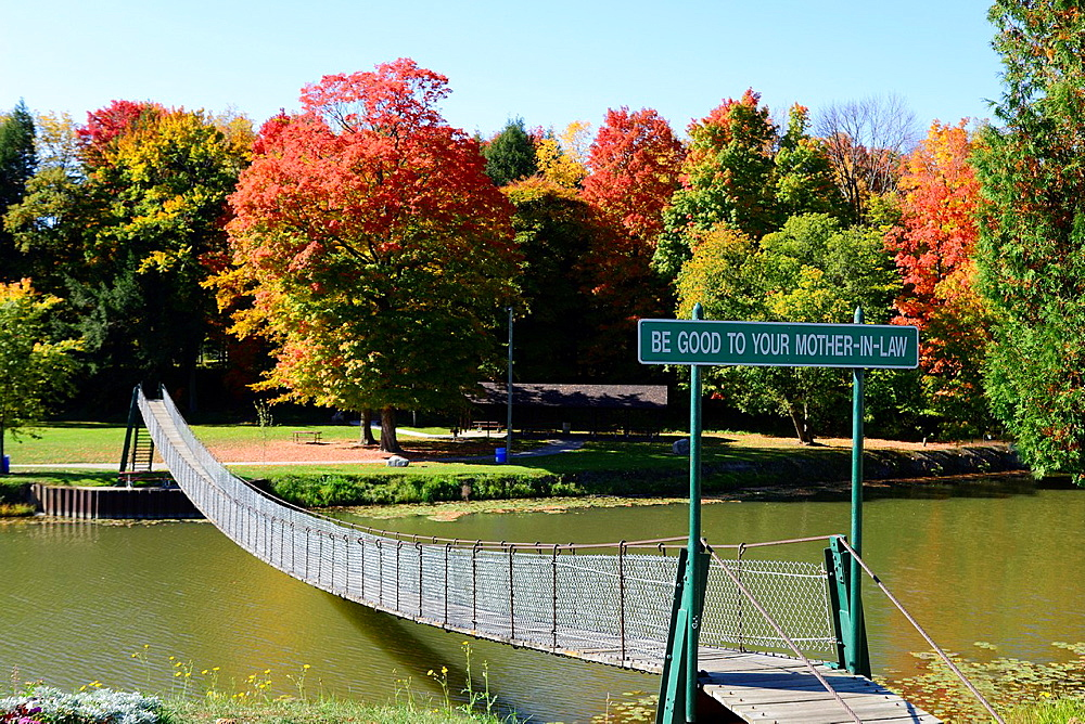 Walking Suspension Bridge Over Water In Autumn Fall MI