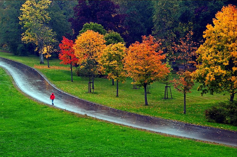 autumn scene, Bavaria, Germany