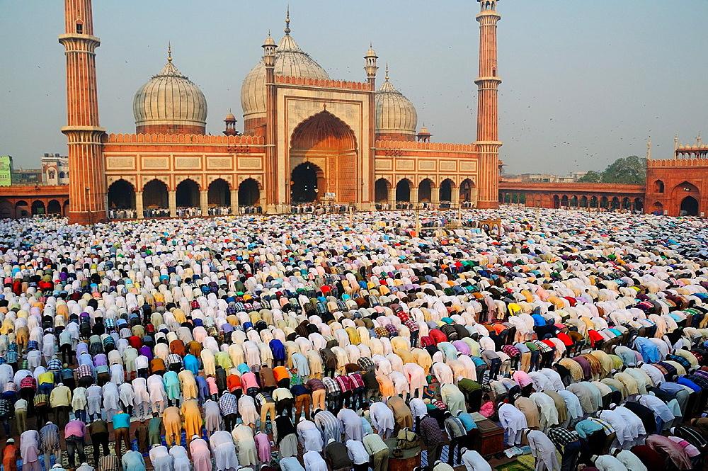 Eid Ul Adha festival at Jama Masjit in Old Delhi - 817-409824