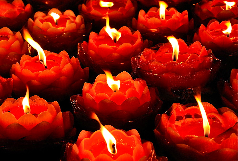 China, Sichuan, Chengdu, Wenshu temple, Chinese New Year festival, Lotus shaped candles - 817-409916