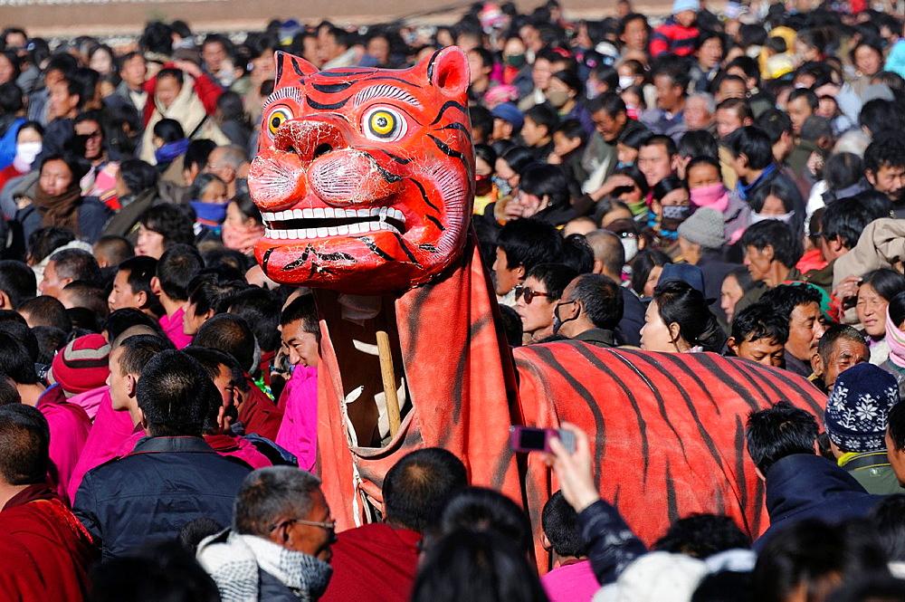 China, Gansu, Amdo, Xiahe, Monastery of Labrang Labuleng Si, Losar New Year festival, Fancy tiger
