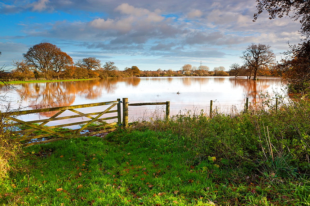 Flooded meadows by the River Exe in the Exe Valley after heavy rain in Devon