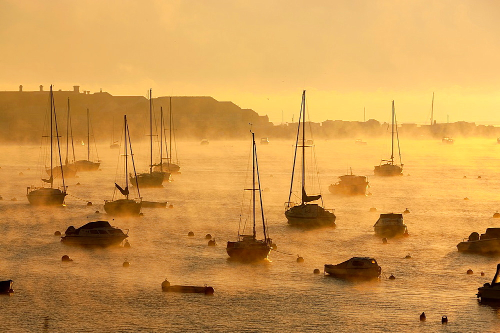 Boats moored on the Teign estuary in Teignmouth, South Devon, England, UK, Europe - 817-411953