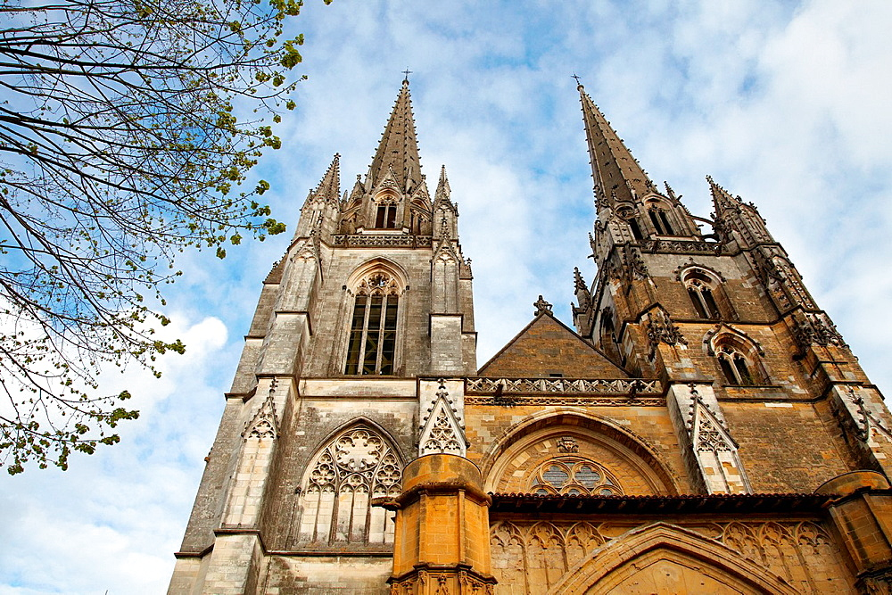 Saint Mary of Bayonne Cathedral, Prebendes street, Bayonne, Aquitaine, Pyrenees Atlantiques, France.