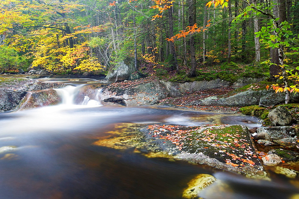 Harvard Brook in the White Mountains, New Hampshire, United States of America during the atumn months