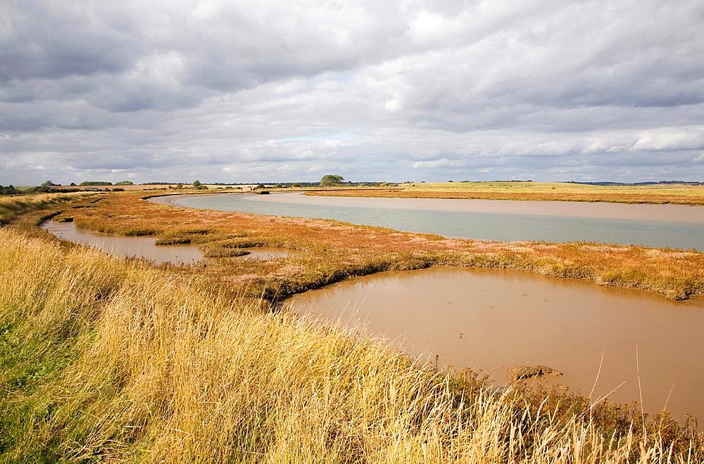 Salt marsh vegetation along the tidal River Ore, Orford Ness, Suffolk, England