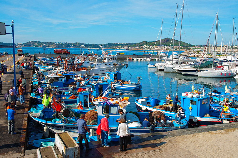Seafood market on Friday at Porto di Pozzuoli the port harbour area of the ancient Puteoli in Campi Flegrei area La Campania region southern Italy Europe