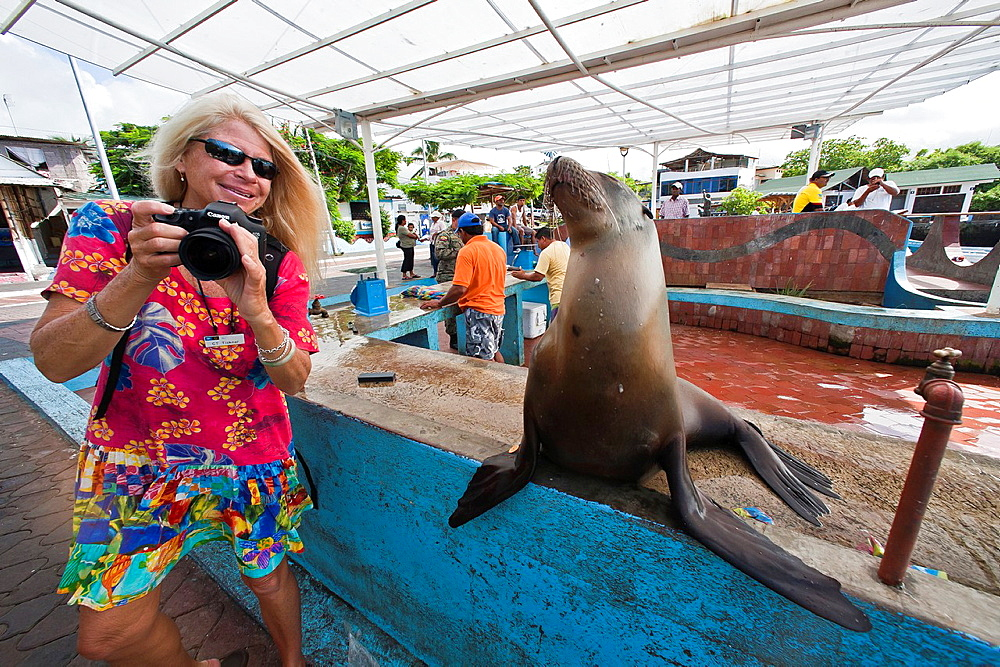 Photographer CT Ticknor from the Lindblad Expedition ship National Geographic Endeavour at the fish market in Puerto Ayora on Santa Cruz Island in the Galapagos Islands, Ecuador