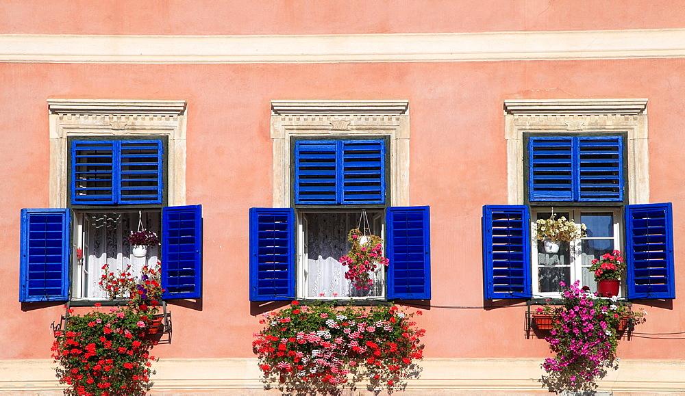 Romania, Sibiu, Piata Mica, windows, flowers,