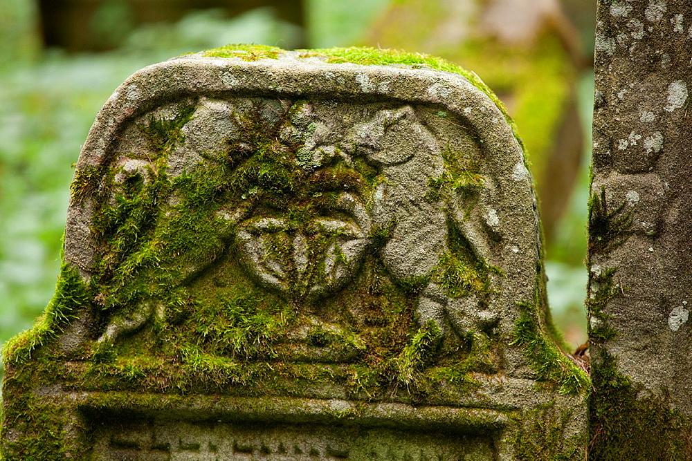 Jew cemetery in Lesko Poland