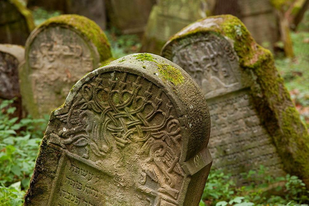 The Jewish cemetery in Lesko  Poland