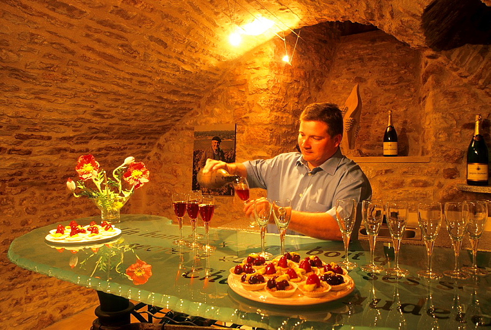 Tasting of Rose des Riceys wine in the Champagne Jacques Defrance cellar, Les Riceys, Aube department, Champagne-Ardenne region, France, Europe