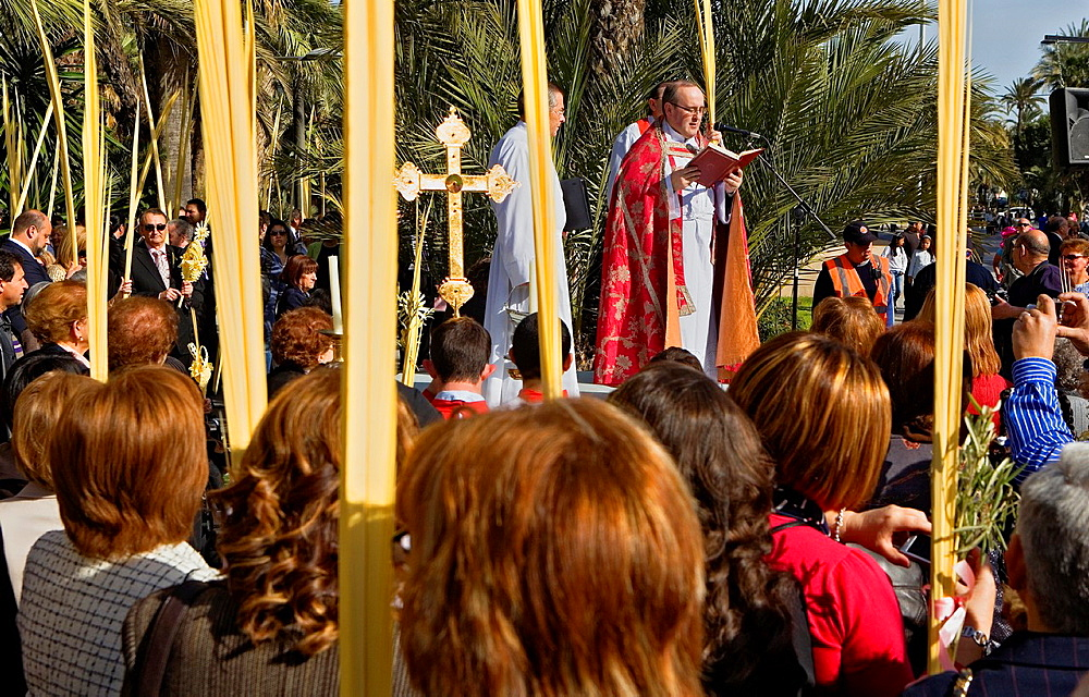 Blessing of the palm Palm Sunday procession procesion de Jesus triunfante, Elche  Alicante province, Comunidad Valenciana, Spain