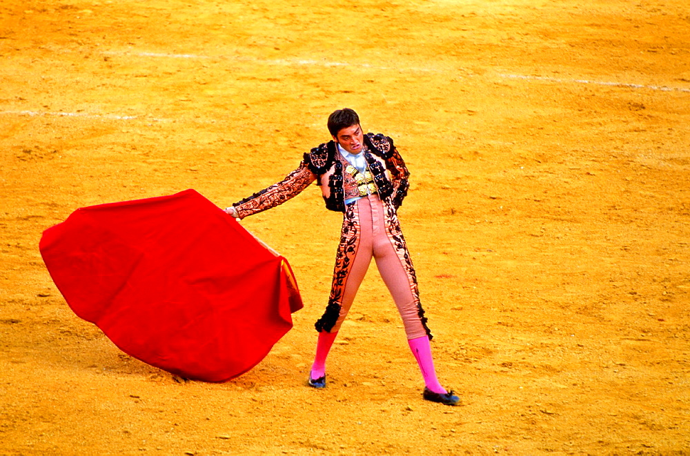Bullfighter  Bullfight at the Plaza de Toros of `La Maestranza¥, Seville, Andalusia, Spain, Europe
