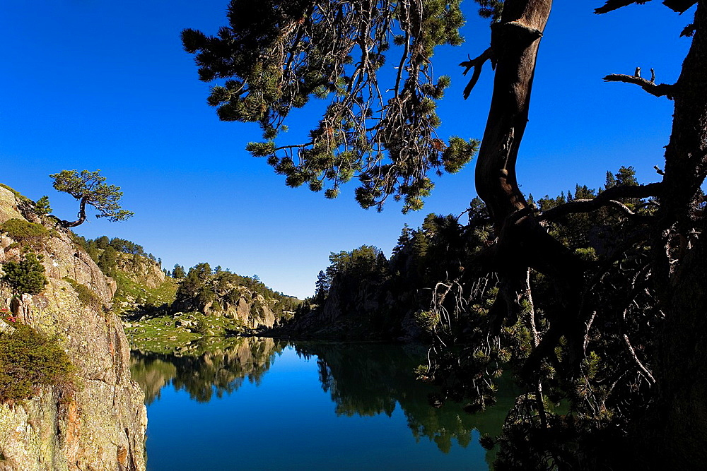 Estany Long,Colomers cirque,Aran Valley, Aiguestortes and Estany de Sant Maurici National Park,Pyrenees, Lleida province, Catalonia, Spain